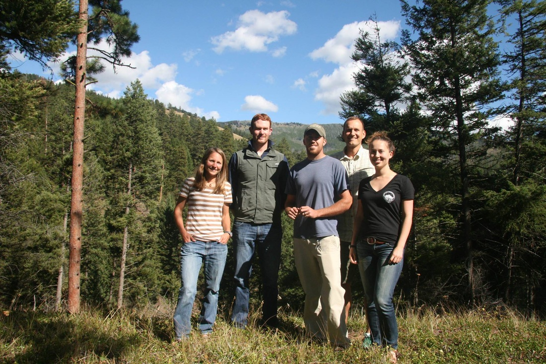 Group of researchers standing outdoors among evergreen trees